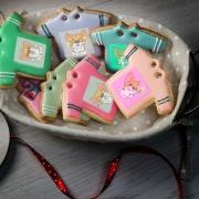jcccjia@gmail.com,Tandora收涎餅乾 ( 12片1盒、含紅線&穿洞 )  [ designed by 椪妹與柯基犬 ],