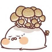 CTONEDAY,茶包巧克力餅乾 (類似小時候的小熊餅乾文青款) ( 附贈禮盒,適合與同事朋友家人分享一起吃 ) [ designed by 萌丸 ],
