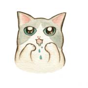 捏嘴巴 捏嘴巴,Tandora收涎餅乾 ( 附贈禮盒 )(收涎保孩子衣食無缺) ( 12片1盒、含紅線&穿洞 )  [ designed by 捏嘴巴 ],
