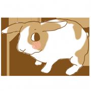 ruby J.,蘿蔔起司餅乾  [ designed by 甜蜜物語 ],