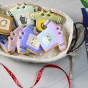 捏嘴巴 捏嘴巴,Tandora收涎餅乾 ( 12片1盒、含紅線&穿洞 )  [ designed by 捏嘴巴 ],