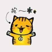 ORECAT我是貓,布朗尼禮盒  [ designed by Orecat我是貓 ],